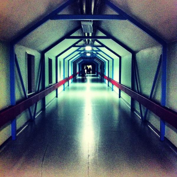 Whippscorridor